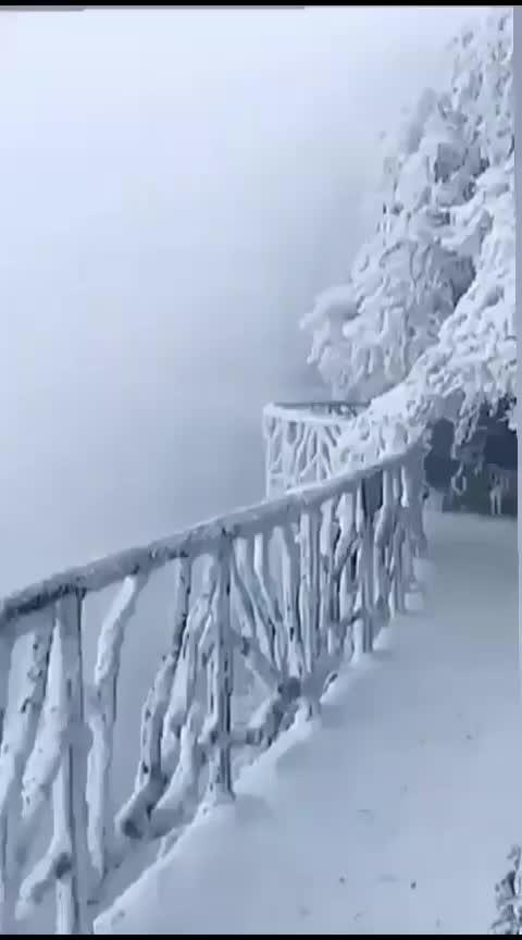 #natureswonder #beauty #wintertime