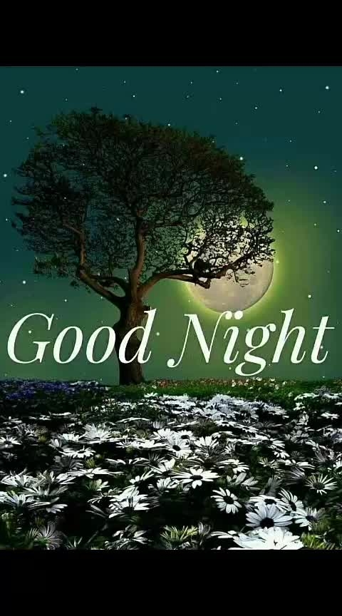 ##good night my all sweet roposo friend.......