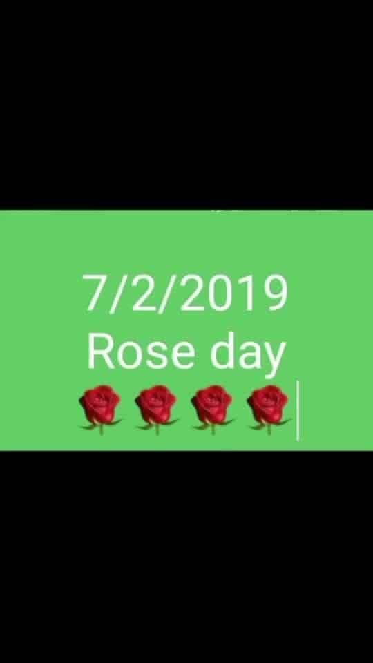 Valentine week #valentinesweek #roseday #chocolateday #kissday2019 #hugday #valentinesdaygift #valentinesdaygoals