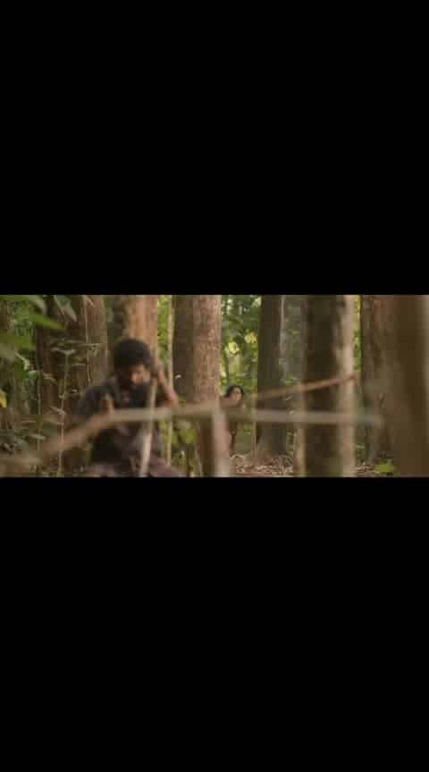 Pulimurugan Super Scene... #pulimurugan #mohanlal #lalettan #tiger #malayalam #malayalammovie #malayalammassscene #filmistaan #filmistaanchannel