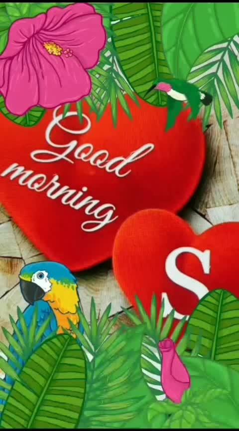 ❤️➖ Good Morning➖❤️➖ 🇮🇪 Happy Sunday  🇮🇪➖ ✳️ @roposocontests  ✳️ #goodmorning #good-morning   #goodmorningpost #goodmorning-roposo   #goodmorningworld  #goodmorningall