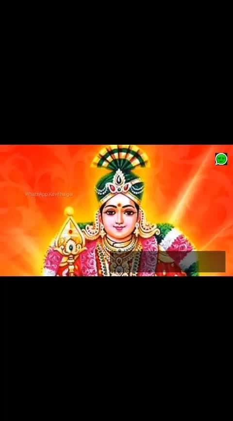 #Thaipusam #whatsapp_status_video  #statusvideo  #tamil #devotionalsongs #murugan #lordmurgan #murugantemple #lord_muruga #2019