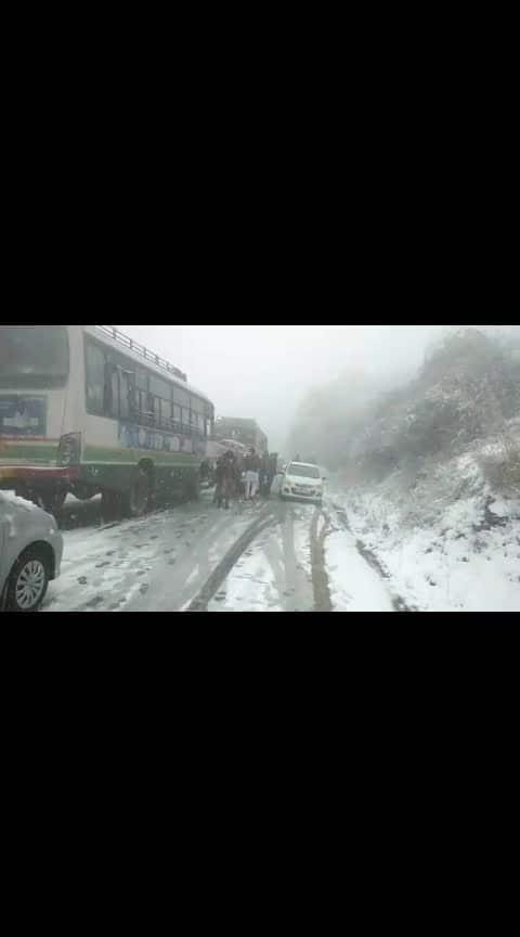 #snowfall  #shimladiaries  #himachalpradesh #winterlookbook