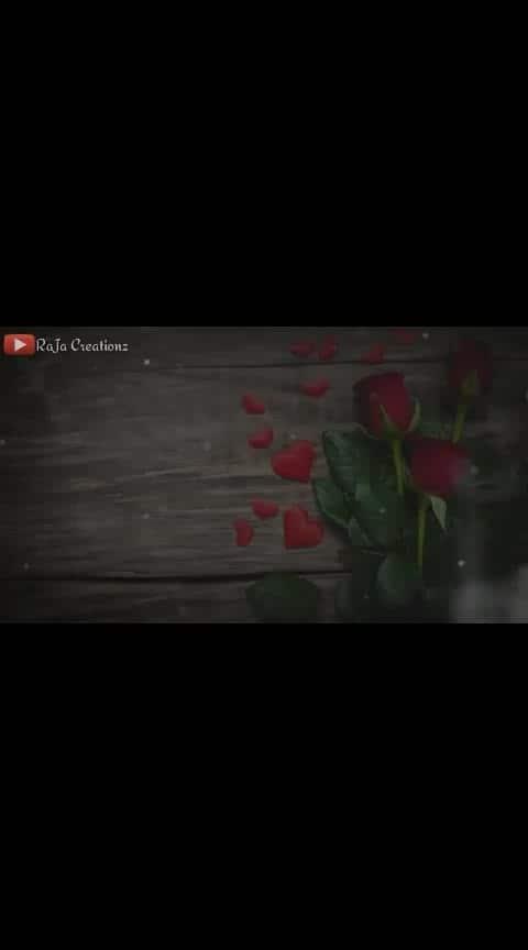 #tummereho #tum_mere_ho_mere_rehna #tum_mere_ho #hindisongs #hindistatus #hindi #roposo-hindi #hindilovestatus #love-hindi #love #loveness #romanticstatus #roposo-trendings #roposotrends #love-status-roposo-beats #in-love #rajacreationz