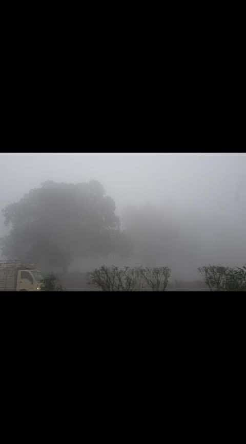 Northern Winter & Fog!! #captured #winterdiaries #travelling #northindia #foggywheather #capturedchannel #roadtrip