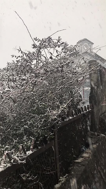 #snowfall #winters #winterseason #featurethis #trending #