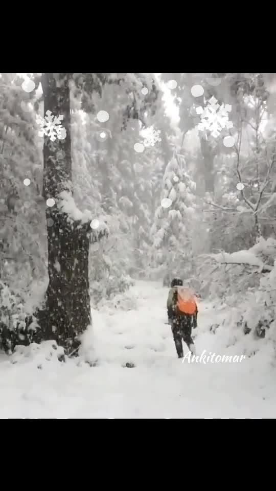 Snowfall at #auli today!!!! #snow #masti #winters #wintereear #safetyfirst #kundinoochh #jaat #jatt #attjatt #snowflake