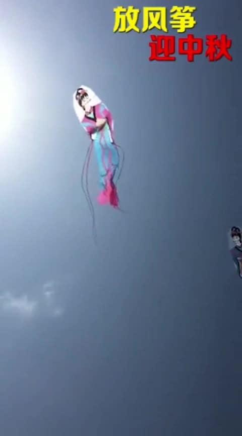 #wowchannel #kiteflying