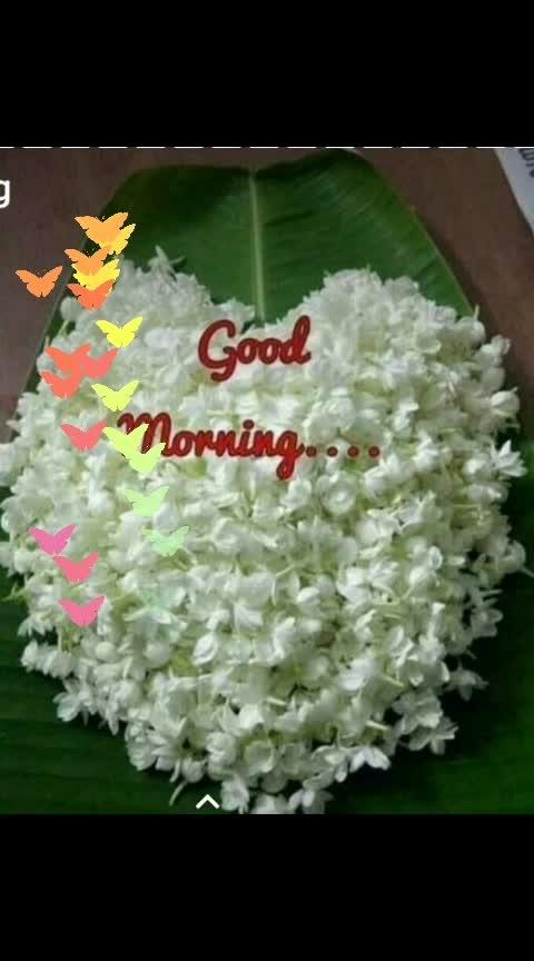 Good Morning! #goodmorning-roposo #roposo-morning #dailywisheschannel #freshmorning