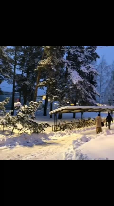 #snow #shimla #manali #kullu #kullumanali #kullumanaliheaven #himachal #himachalpradesh #himachaldiaries