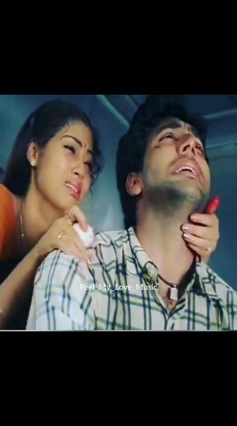 #hd #tamilsingles #lovepain #feelmylove #lovefailure #tamilmusic #tamilsonglyrics #thalapathy63 #ilayathalapathyvijay #tamilovestatus #dhanush #tamillovefailure #tamillovesong #tamillovers #tamilvideo #kamal #vijaysethupathi #tamillovesongs #petta #vantharajavathaanvaruven #tamilan #nayanthara #keerthysuresh #tamil #kollywood #tamilnadu #tamilactor #indiancinema #yuvanshankarraja