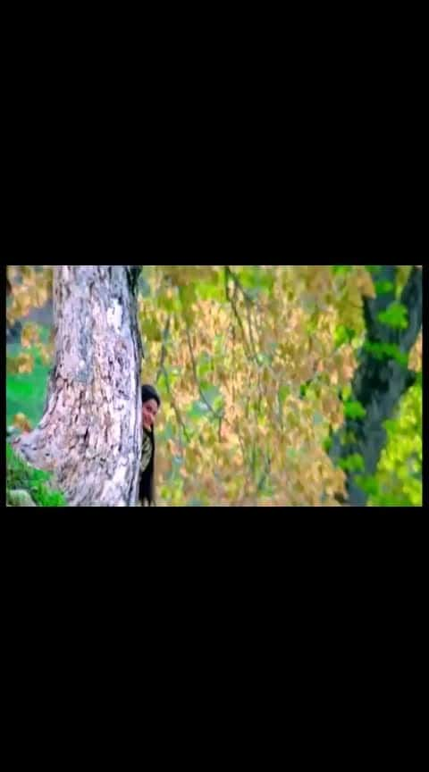 #kadhal_rojave #kadhalrojave #ar #armaanmalik #manirathnam #aravindsamy #madhubala  #tamiltrending #tamilvideostatus #tamillovestatus #tamillovesongstatus #tamil #roposotamil #tamilcinema
