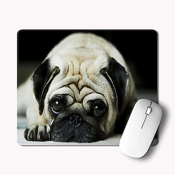 Cute Pug Dog Printed Rectangle Non-Slip Rubber Mousepad @ Rs. 199/- 👉 Cash On Delivery Available 👉 Free Shipping ✅ Pay with Paytm or Google Pay +91-9867002820  #Mousepad #RubberMousePad #giftideas #gift #giftforfriend #customizegift #OffersKraft #businessowner#CorporateGifting #design #smallbusinessowner #artworks #womeninbusiness #officeessential #ShopOnline #BuyOnline #onlineshopping