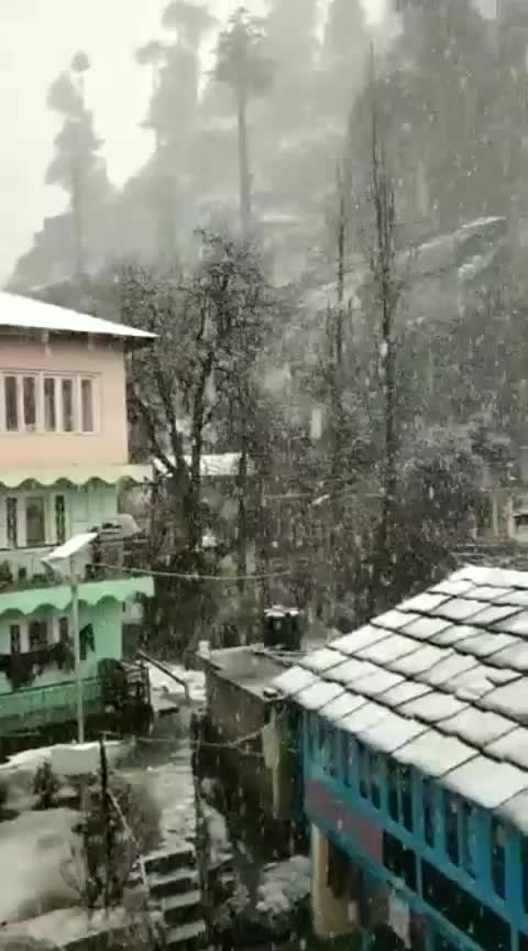 #snowfall #manali #beautiful-life ❣️❣️