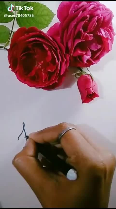 happy rose day #valentineweek #roseday2019  #beatschannel #featurethisvideo #roposocreativity #roposovideoeffect #roposostar #featureme #featurethisvideo #roposotranding #roposo_star #star #love-status-roposo-beats #bollywoodlovers #bollywoodmusic #bollywoodcollection