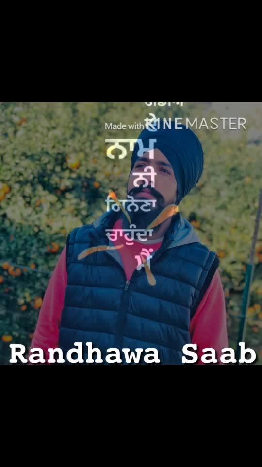 #sardari #sardar