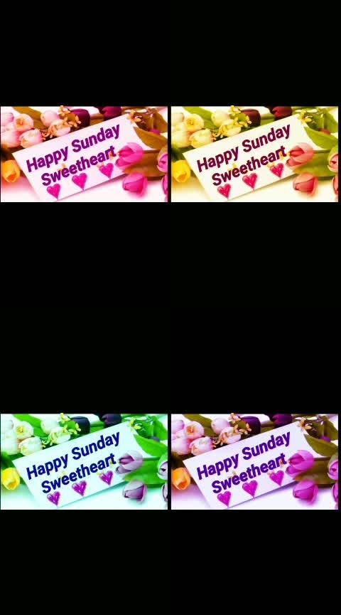 #sundayshowdown #sundaymood #sundayfun #ropo-love