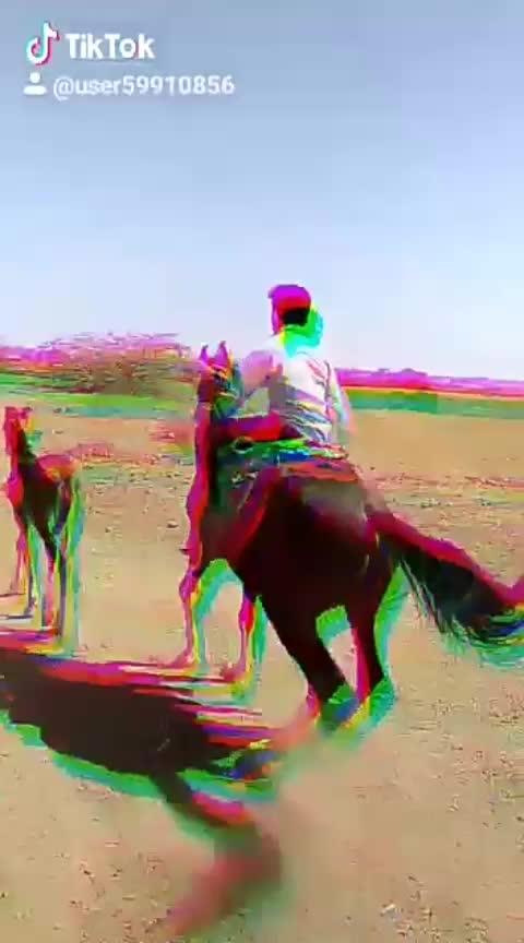 horse lover #horseriding #ahirat #jay_murlidhar #jalsa #moj