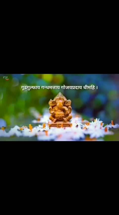 गणपती बाप्पा मोरया....!!!!  #ganpatibappamorya  #maharastrians  #ropo-love  #roposoness