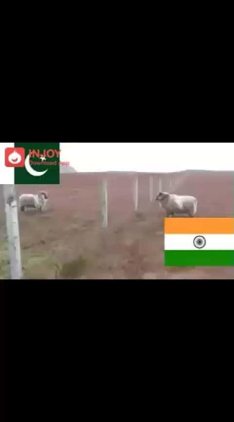 #bharat-vs-pak