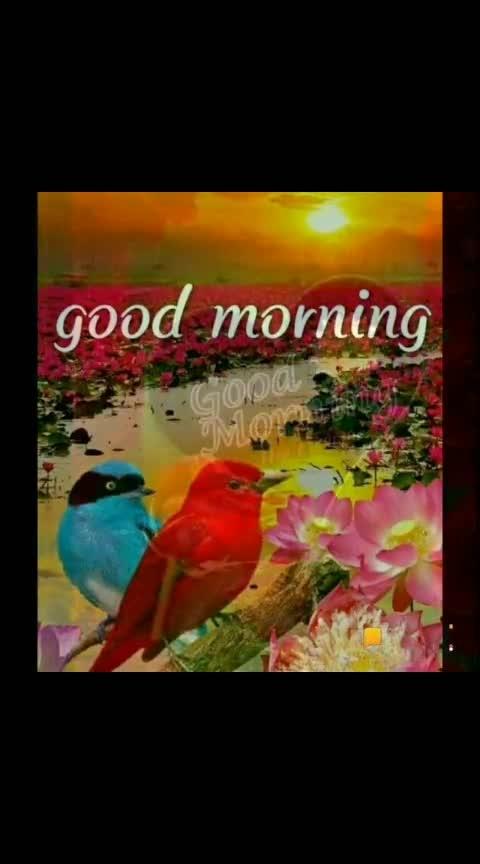 #roposo #20million #20millionfollowers #good----morning