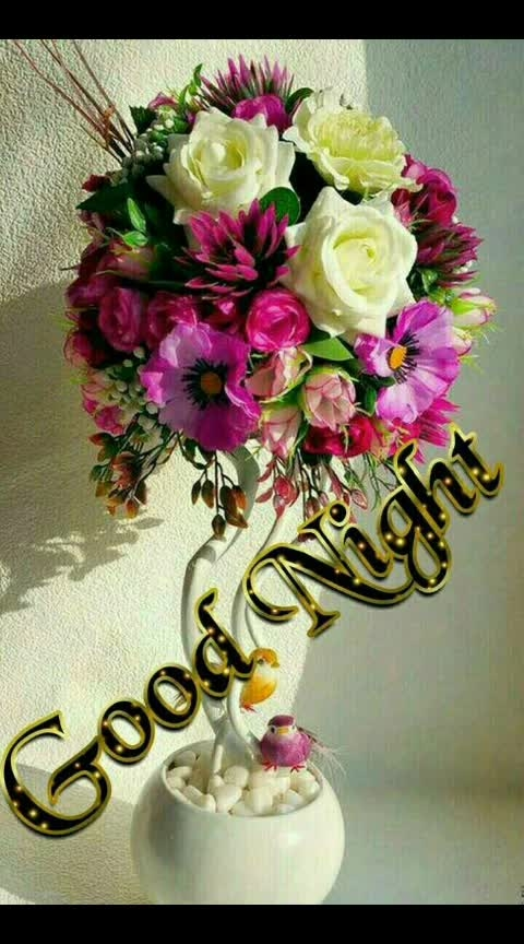 ##good night my all sweet roposo friends ...