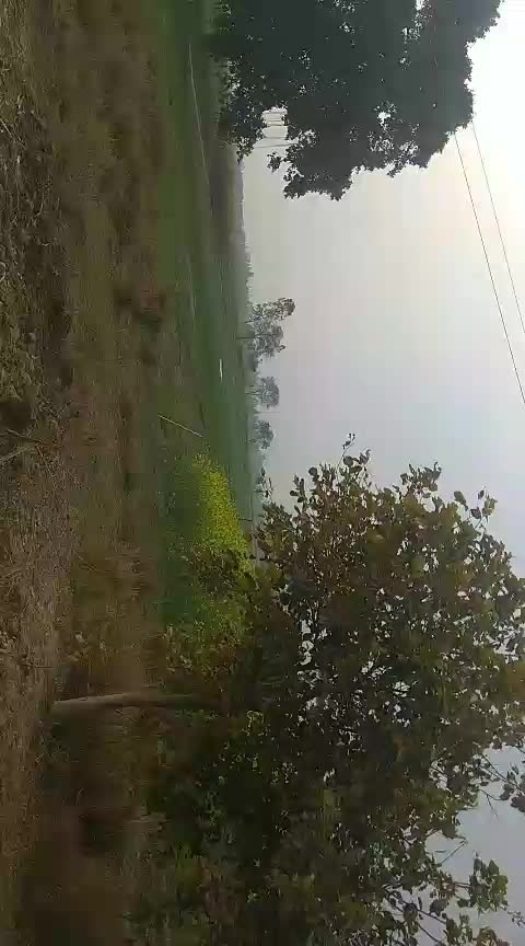 #village #greeneryaround #greenery #travelling #travellove #travel diaries #uttarpradesh #uttarpradeshtrip #uttarpradesh