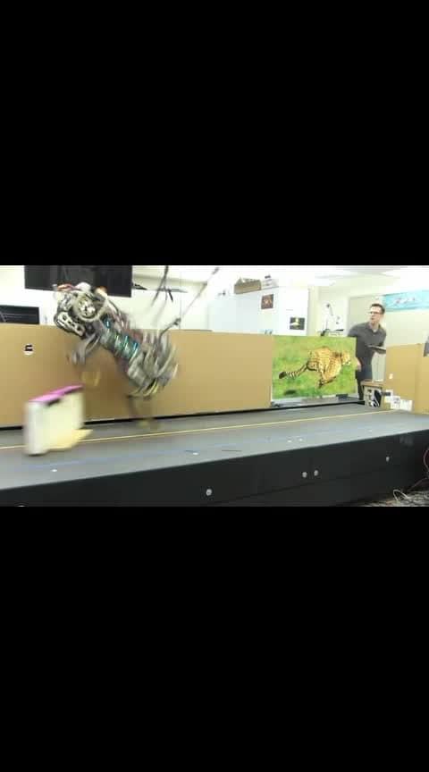 #robot #techno #gizmo #artificialintelligence