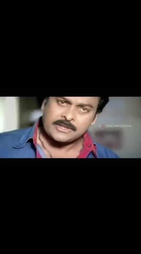 chiru song #chiranjeevi #shankardadambbs