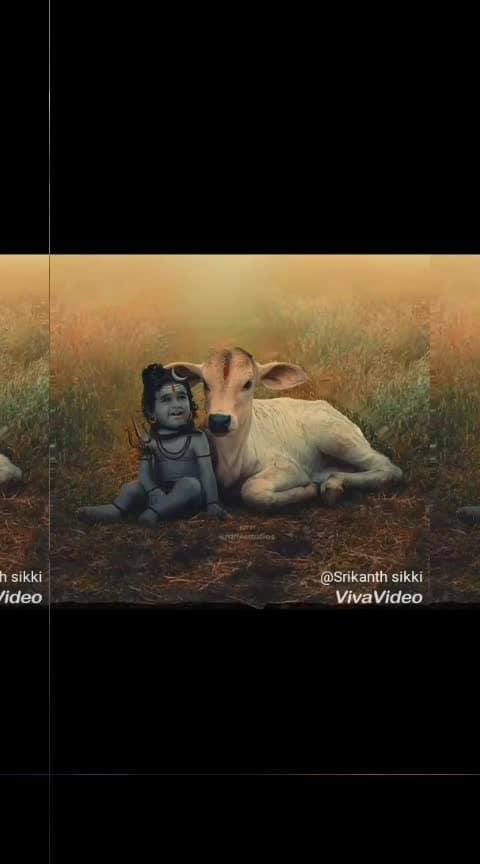 #shiva #shamboshankara #haraharamahadev 🙏🙏🙏 #editor #blogstyle Sikki #kannadiga  with #roposoeffects #roposofeeds #roposo_india