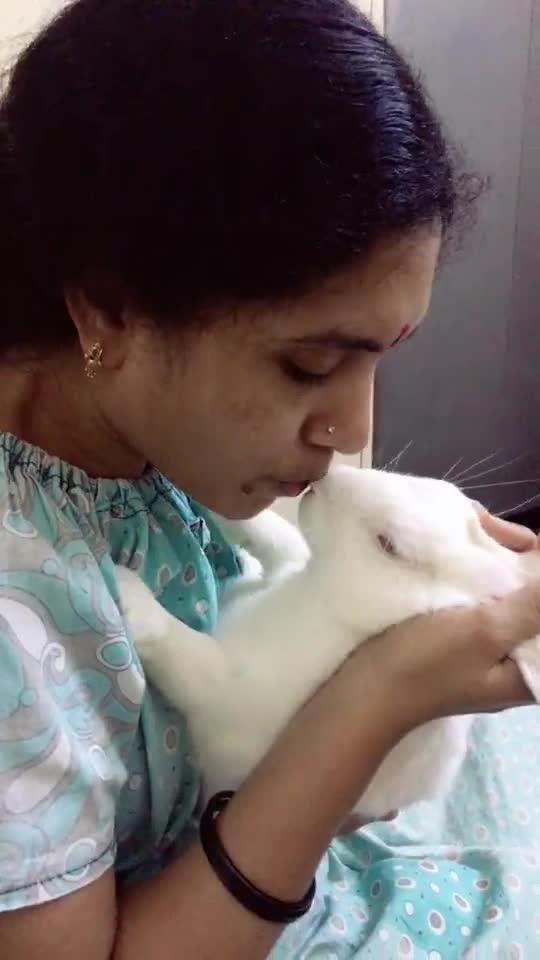 Amma love #rabbit #petslover #amma #roposo-pet #love