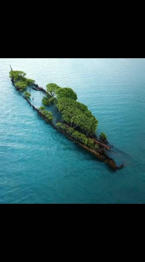 #amazing-creativeness #sea-creation #nature