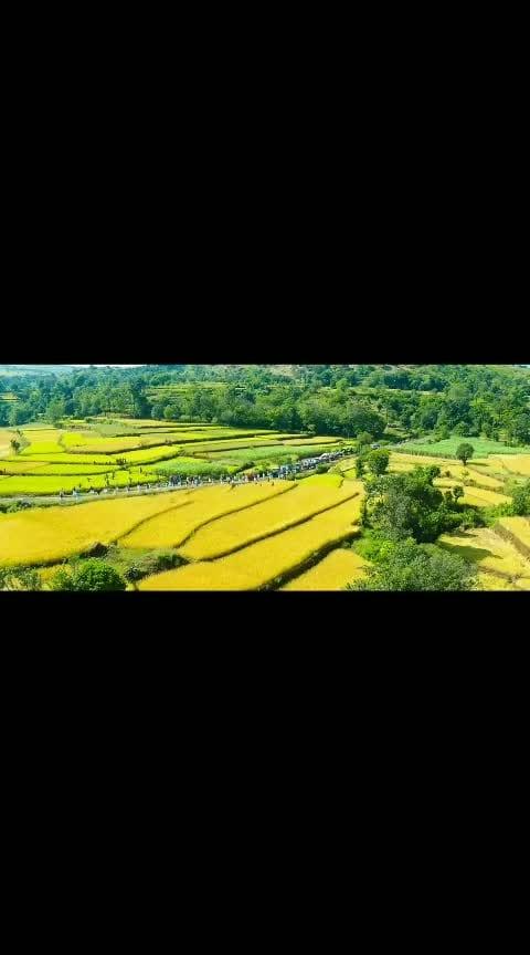 #Viswasam telugu trailer - #ajith #nayanthara #newtrailers