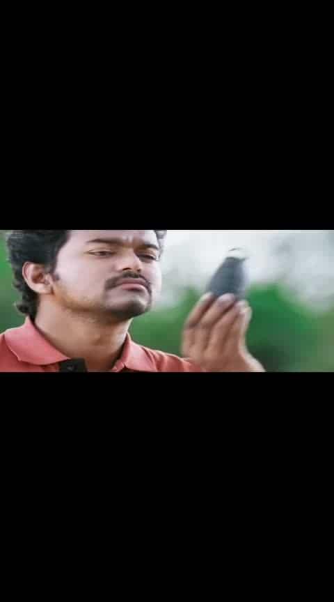 aaaviiii peiiiii naaaaaaiiiiii #vadivelucomedy #thalapthy-vijay #kavalan