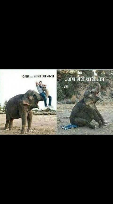 हाथी का भी तो हक़ बनता है न सही कहा न....👌👌👌👍👍👍#haha #haha-tv #roposo-haha #haha-funny #hahaha #roposo-haha_tv #halfpic #funnypictures #very-funny #roposo-funny-comedy #funnypic  @roposilovestaus0099 #ropo-msti @roposocontests @mayakumari1084