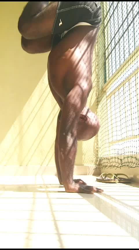 Thursday Upper Body Basics . . . . . #tuckhandstand #handstand #gazeshift #yogastrong #yogaeveryday #yogalove #yogainspiration #yoga4roposo