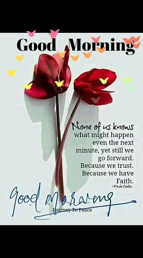 #goodmorning #rose 🌹
