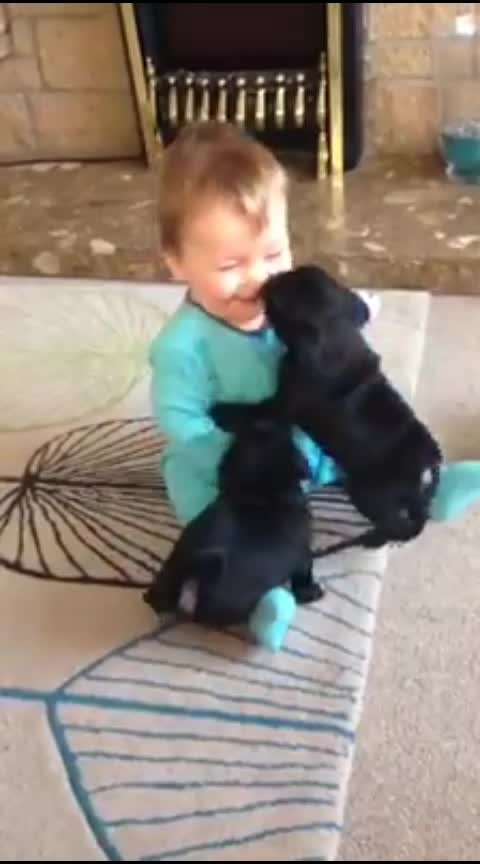 Cute baby 👶 with puppy 🐶 #cutenessoverloaded