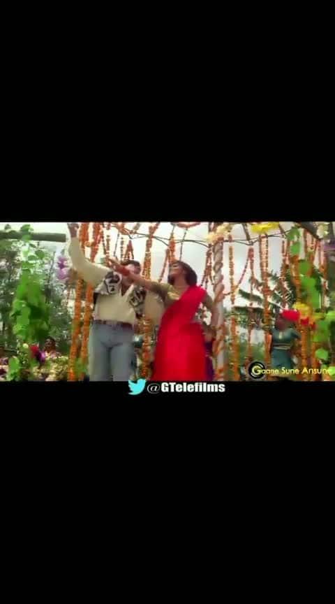 ढूंढ रहे सपनों की गलियों में 💚#lovesong 💚#sunilshetty #bollywood #dancelove #lovesongs #stauts  #old-is-gold  #bollywoodstyle  #dancelovers   #heart_touching_song  #iloveyouu  #statusvideosongs  #new whatsapp status video mohan #filmistaan  #latest #filmkeeda  #actorslife #actress #supperstatus #gana-love #gana-love #ganapathi #sapnokirani #bollywoodking #whatsapstatusvideos #bollywoodhits #superdry #loveness #loveforearrings #in-love-