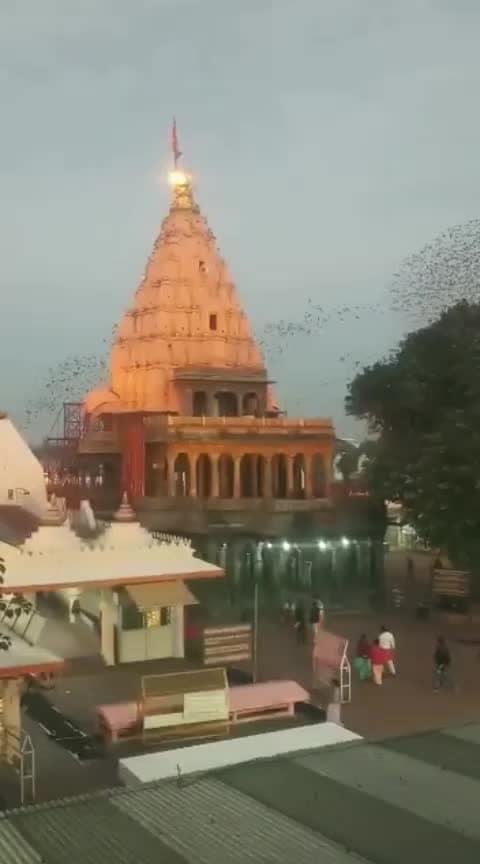 #mahakaleshwar #amazing_ #birding ##newpost #shiv #temple #devotional #sawan #worship #roposo #soposo #omnamahshivaye #jaibholenath 🙏🙏Jai Bhole Nath.