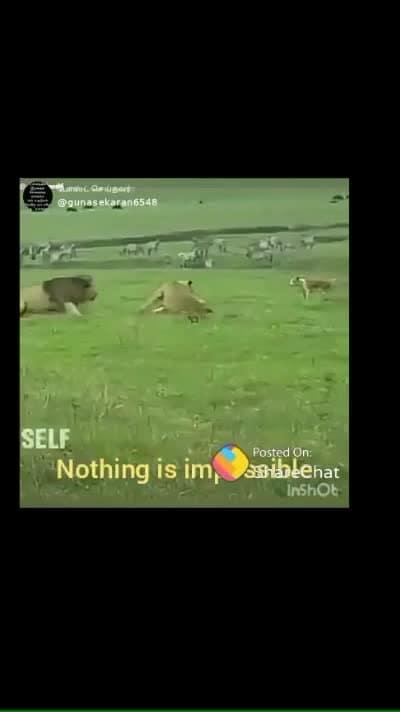 #nothingisimpossible