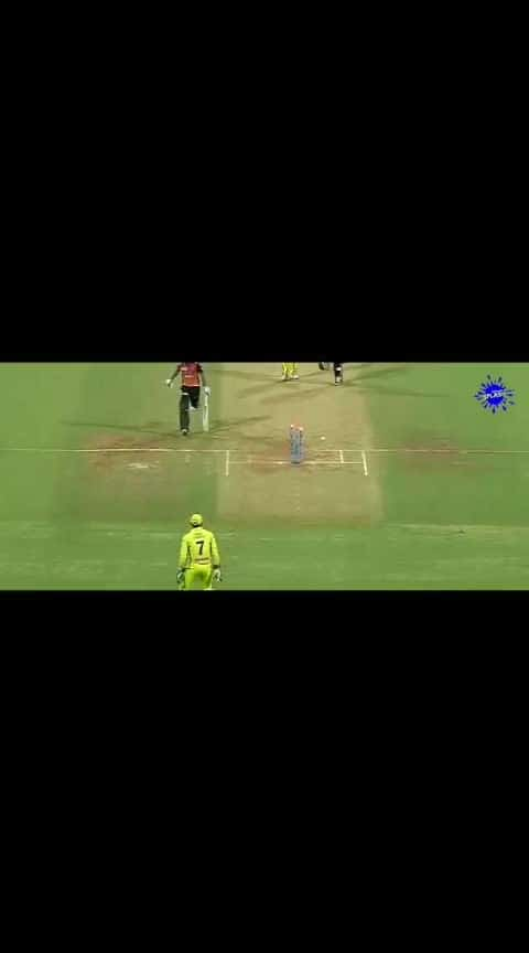 MSD #action ultimate