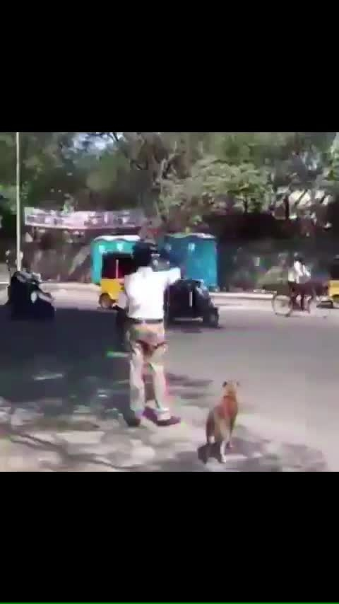 Indian police helping the dog to cross the road - Whatsapp status video. Heart touching video. Humanity never dies. #doglove #india #indialove #iloveindia #indianpolice #doglovers #lovelyvideo #mankind #humble #love