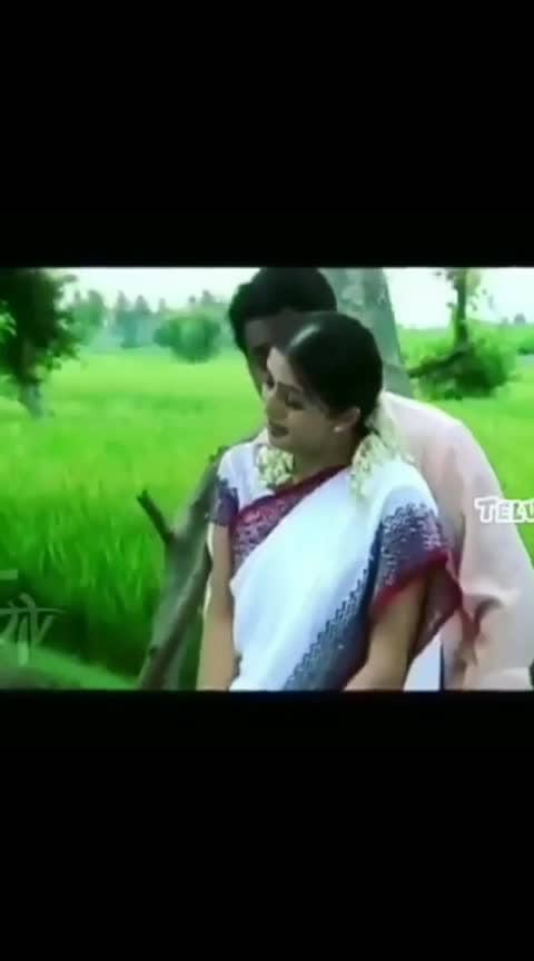 #ntr #boomika #simhadri #nannemicheyyamaku song
