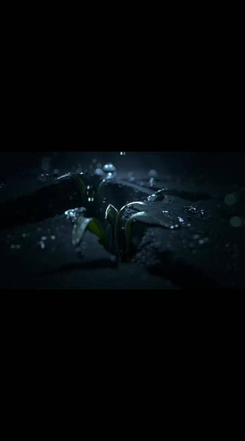 Mention your favourite and lovable frnd in this video to show your love through this lovely and amazing video #creative #rose #ropo-video #awesome #theme #wallpaers #roposo #instagram #facebook #life #sound #waterdrops  @g14neha @sonam8df25046 @aakashgupta60 @amit52b29df9 @kapil13ef0377 @kohlimanju @manju963465 @manju2306 @sonapatel9 @sumit0345e56d @sakshiyadav5876910a @abhijeetmitra @sonam9083063 @sonud5052201 @hulk @pawan44290940 @krupaliraval411 @rupalimitl @stylish_me_akki @sunilgaude @kavita6cf5be96 @santoshprajapati10 @sahil9700c377