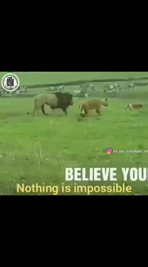 #believe  #believeinyourself #nothingisimpossible