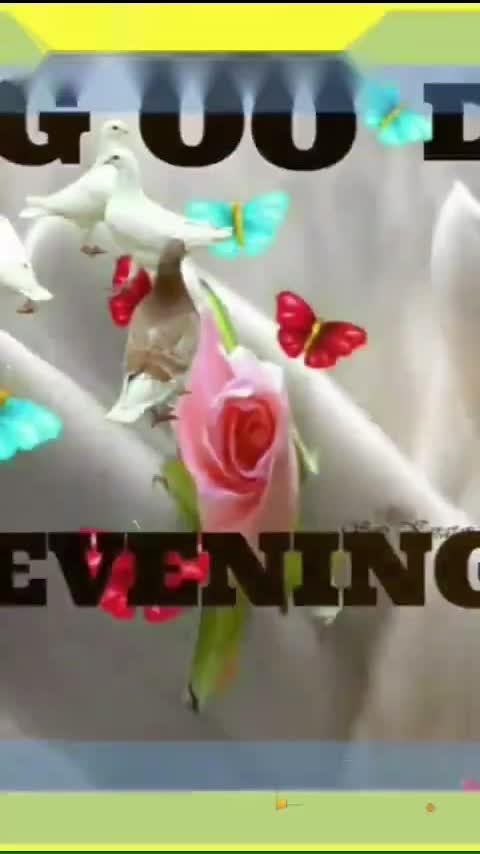 Good evening friends ☕️☕️
