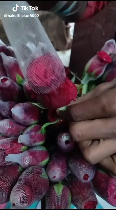 #red-rose #rosepetals #roselove