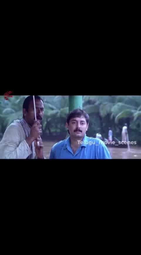 #bombay #aravindswamy #manishakoirala #scene #roposo-telugu #roposo #beats #roposo-beats #filmistaan #filmistaanchannel @beats_page