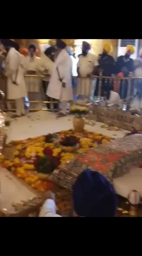 #amritsar  #harmandirsahib
